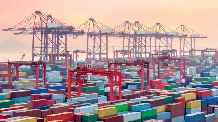 Port of Belize signs agreement with Octopi by Navis