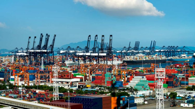 IMO: Customs and ports urged to maintain flow of critical goods
