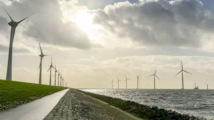 Trelleborg supports windfarm development with offshore cable protection