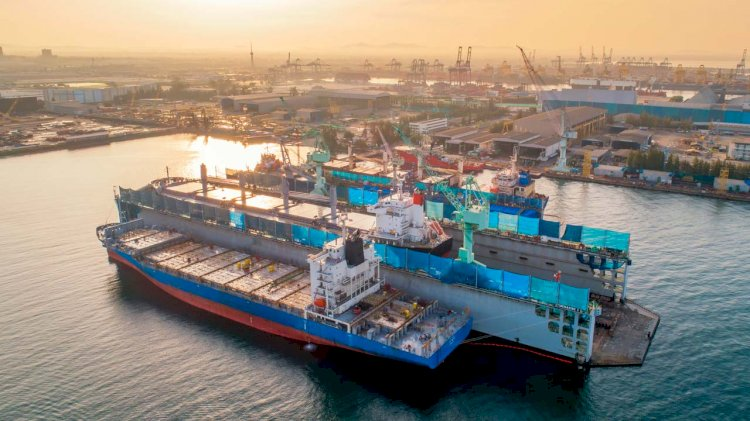 BIMCO completes the first draft of in-water guidelines geared for IMO approval