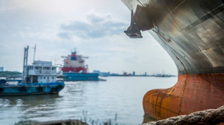 HullWiper joins global industry alliance for marine biosafety