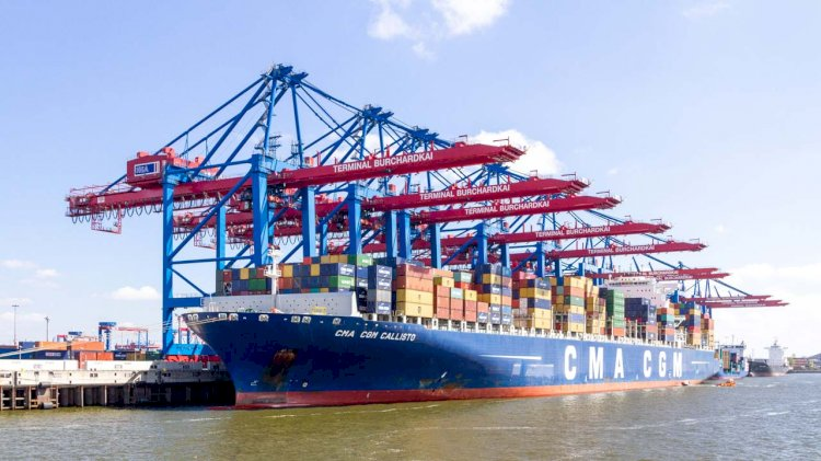 CMA CGM commits to fight illicit trafficking in protected species