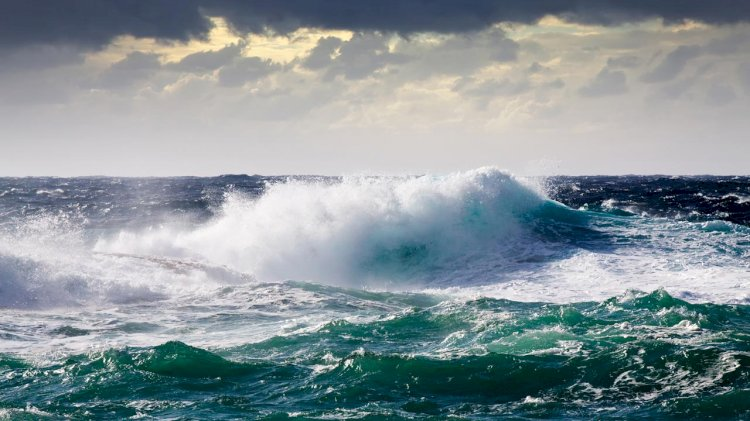 WES awards £1.4 million for wave energy connection systems