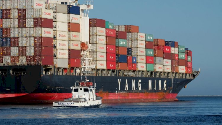 Yang Ming to add two 11,000 TEU vessels to fleet
