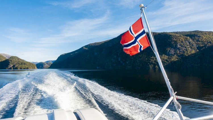 Study: A toxic cocktail in Norwegian waters - chemicals from car tires rubber
