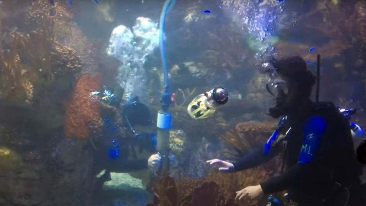 VIDEO: Engineers built a squid-like robot for underwater exploration