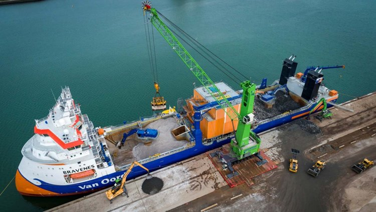 TenneT investigates biodiversity improvement at North Sea cable intersections