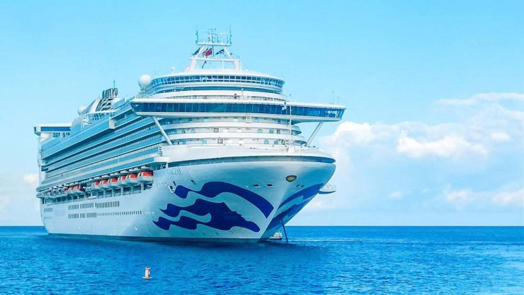 Princess Cruises extends pause of global ship operations into 2021