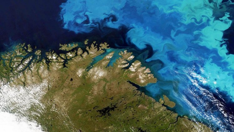 CGG Satellite Mapping completes Barents Sea seeps study for NPD