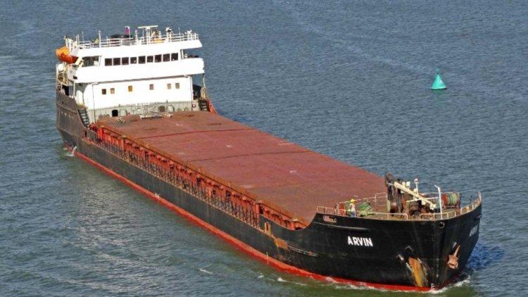 Update: Cargo ship sinks off Turkey's Black Sea coast, two dead