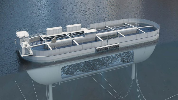 Stadion Basin project: Floating production system for salmon will be completed in 2023