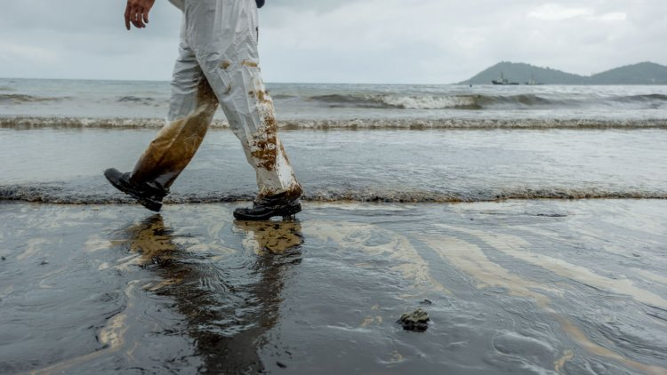IMO regional pollution centre assists with oil spill incident in Israel