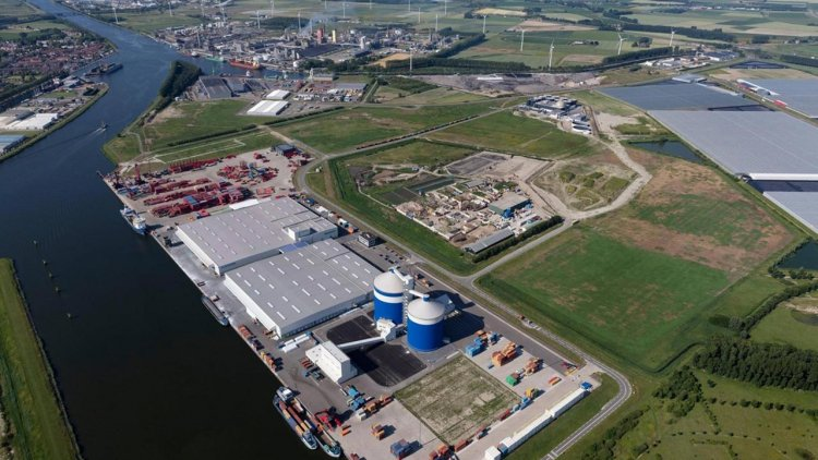 Container giant MSC to open new depot in North Sea Port