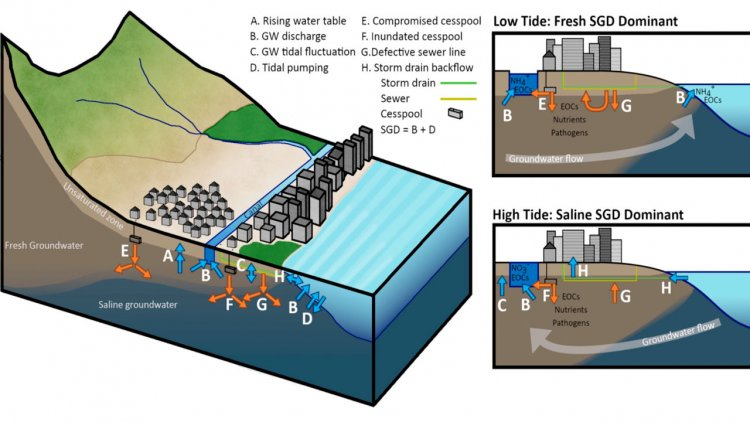 Reseach: Sea-level rise drives wastewater leakage to coastal waters
