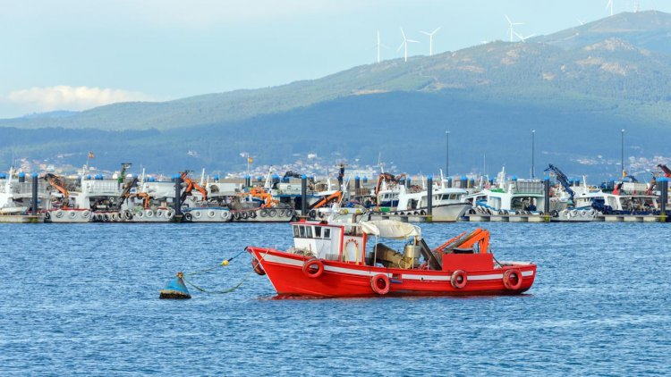 AST empowers UK fishing crews to reduce accidental wildlife bycatch with new smartphone app