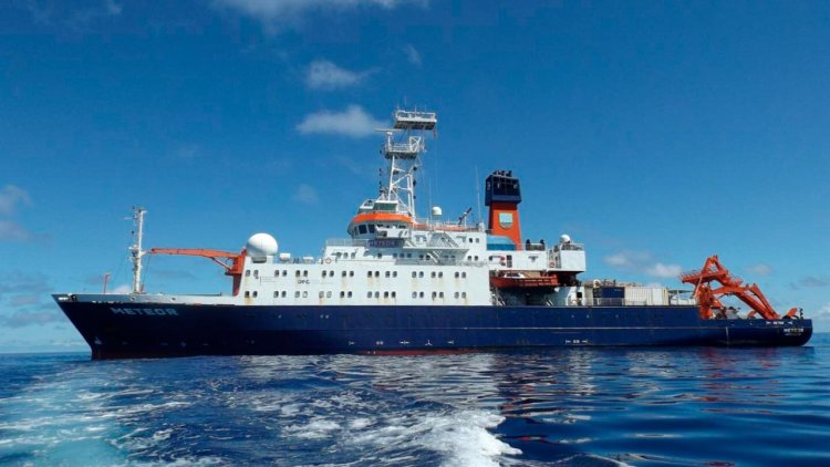 Marine biodiversity: Enormous variety of animal life in the deep sea revealed