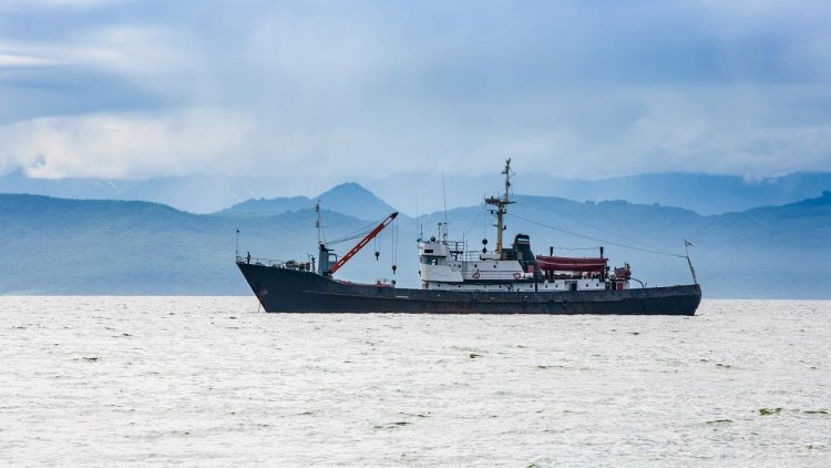 NYK starts sharing Ship Operation Data with Japan's Fisheries