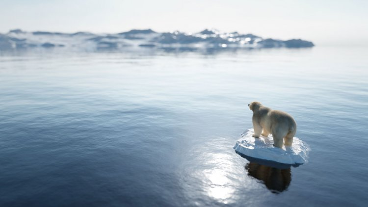 Research: Earth's cryosphere is shrinking by 87,000 square kilometers per year
