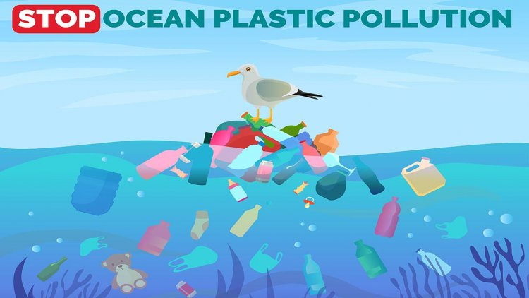 Mathematical model predicts the movement of microplastics in the ocean