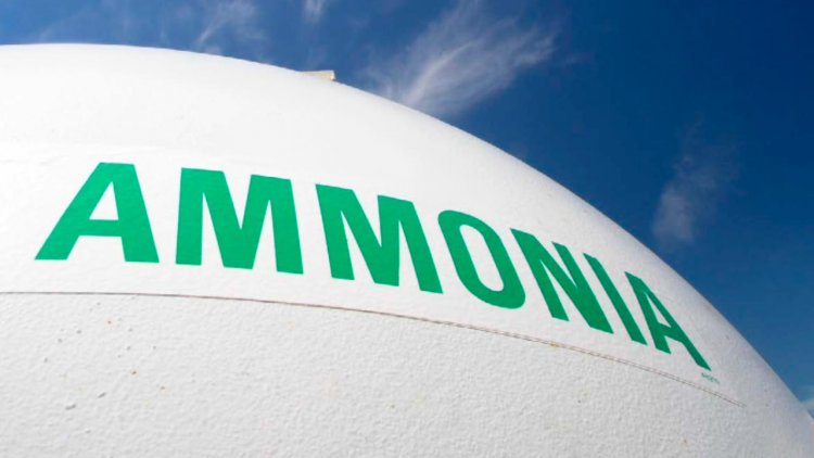 Woodside joins Japanese players to study shipping ammonia fuel from Australia to Japan