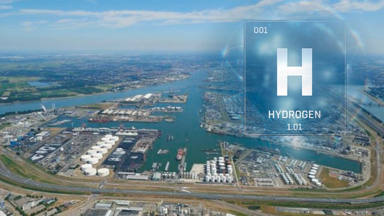 Four players sign MoU to study commercial-scale hydrogen imports to the Netherlands
