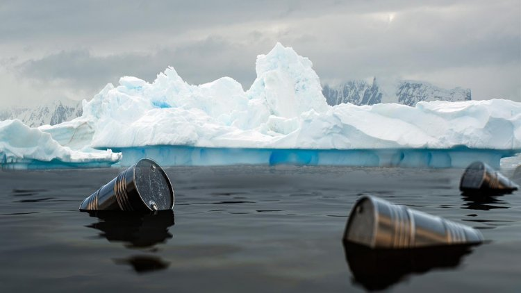 Marine bacteria in Canadian Arctic capable of biodegrading diesel and oil