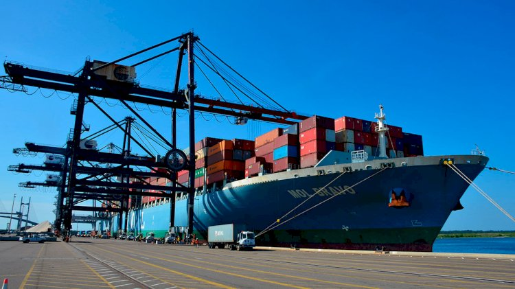 JaxPort reaches record numbers