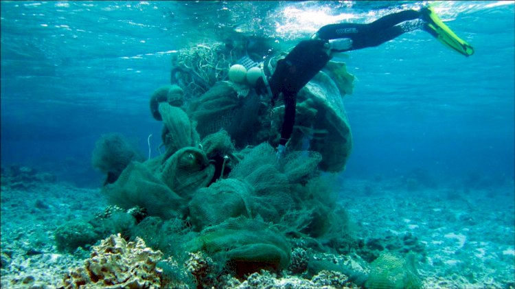 NOAA awards $2.7 million in grants for marine debris removal