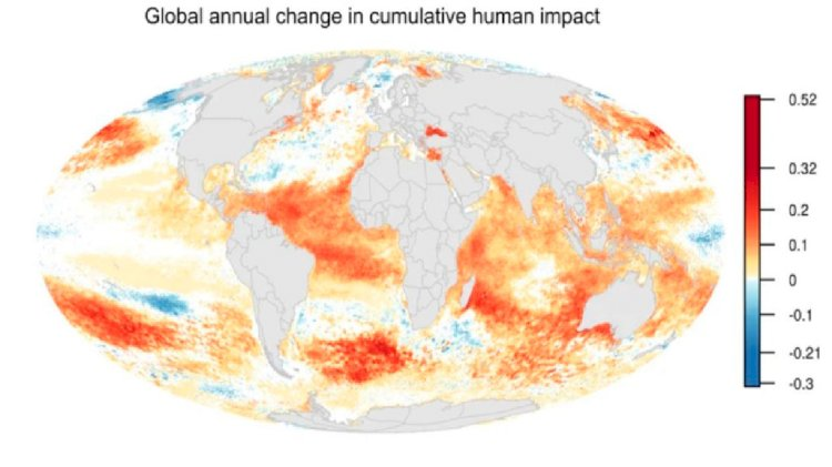 NCEAS's study: Human impacts on oceans have doubled in the decade