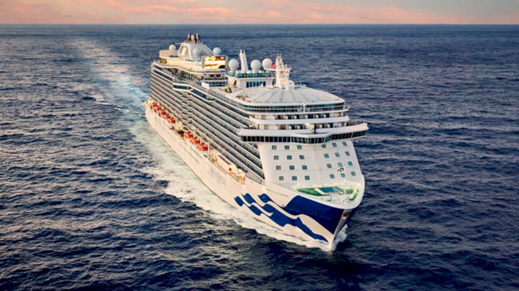 Wärtsilä's auto gasification solution to provide waste disposal for the Regal Princess