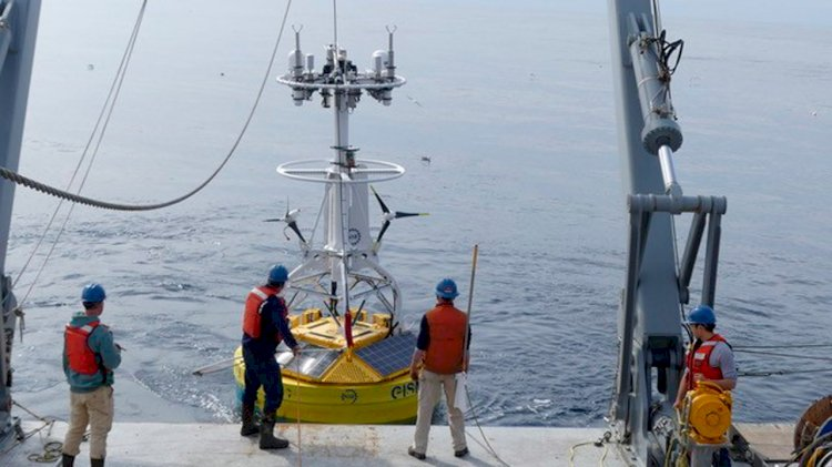 Irminger Sea: The buoy meteorology system returned a wealth of scientific data