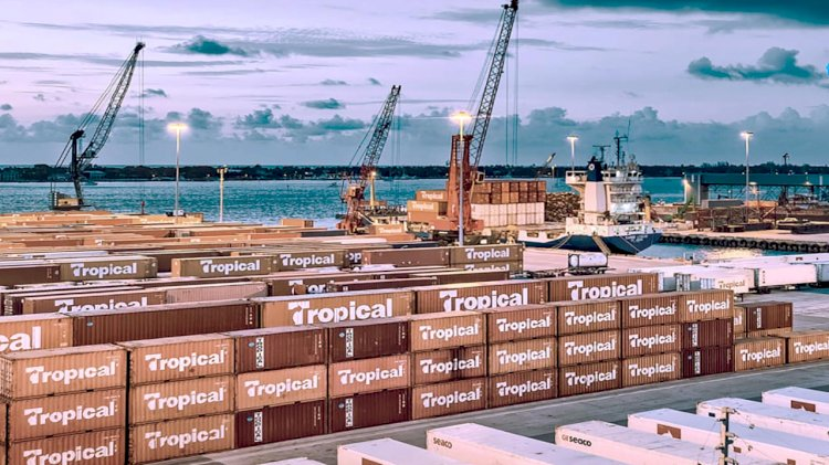 Tropical St. Thomas Terminal implements Octopi to improve its productivity