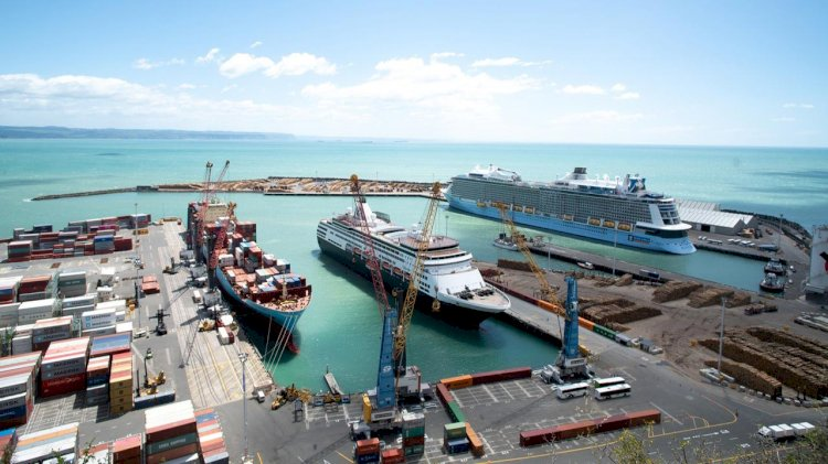 Napier Port appointed a contractor to build its new wharf