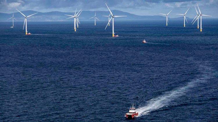 Bureau Veritas certifies Ørsted's Borkum Riffgrund 2 offshore wind farm