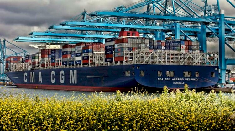 Total will supply LNG to CMA CGM's future containerships in Marseille