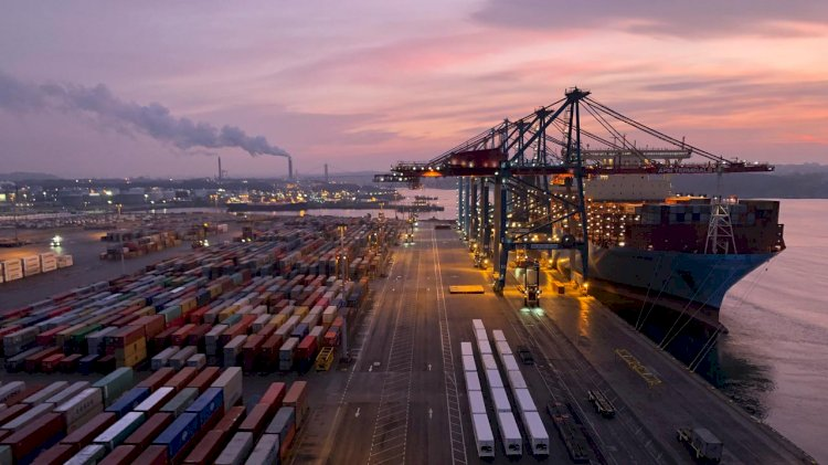 APM Terminals Gothenburg to offer fully climate-neutral cargo handling