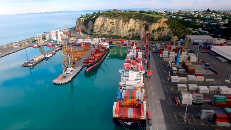 Napier Port will use limestone rock to develop an artificial reef
