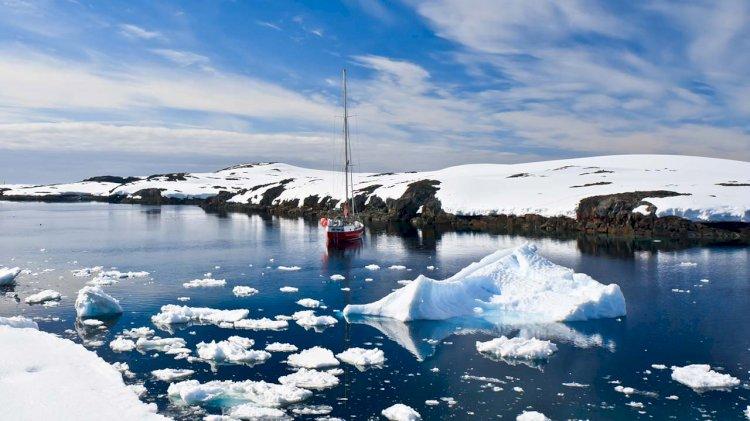 New Antarctic crustacean species described after 82 years