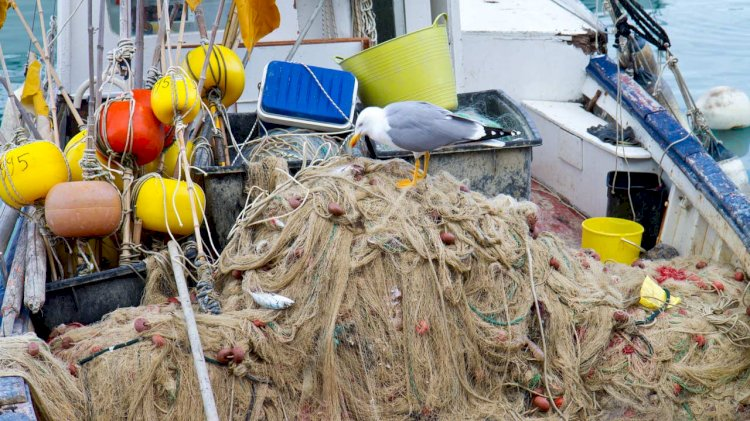 EMFF launches new project to develop biobased ropes for aquaculture